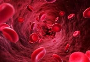 カッピング ⑤ 血液